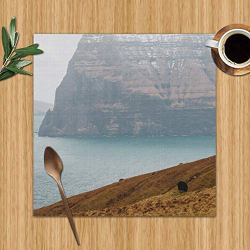 Sheep Herding On Kalsoy Island Spotted Wildlife Faroe Nature Colour Print Placemats,Placemats,Placemats Dining Table,Heat-Resistant Placemats, Stain Resistant Washable Pvc Table Mats,Kitchen Table Mat