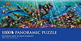 Amethyst Reef Panoramic Puzzle by John Enright 1000 PCS