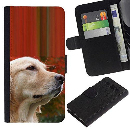 EuroCase - Samsung Galaxy S3 III I9300 - labrador golden retriever wise dog - Cuero PU Delgado caso cubierta Shell Armor Funda Case Cover