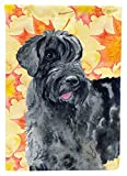 Caroline's Treasures BB9921CHF Giant Schnauzer Fall Decorative Canvas Outdoor Flag, House Size, Multicolor