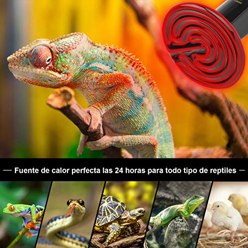 bedee Bombilla de Ceramica Reptil, Lámpara de Calor Infrarrojo de Cerámica de 100 W, Lámpara de Calor para Tortugas/Pollo/Perro/Serpiente/Gato/Mascota sin luz E27 220-240 V