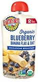 Earth's Best Organic Stage 2, Blueberry & Banana Breakfast, 4 Ounce Pouch (Pack of 12) (Packaging May Vary)