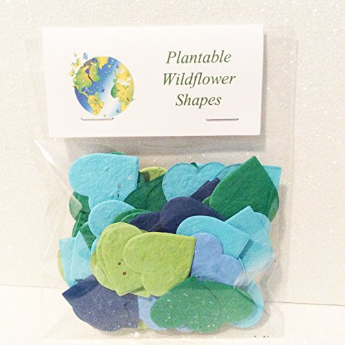 Bag of 54 Plantable Earth Day Hearts