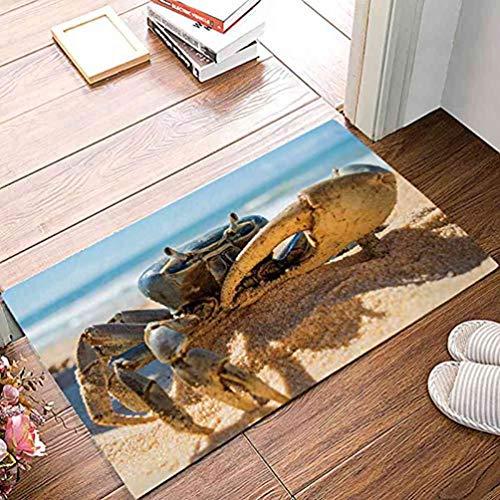SHUNLEI Entrance Door Mat Rug Indoor/Outdoor/Front Door/Shower Bathroom Doormat, Non-Slip Shoe Scraper Carpet 20
