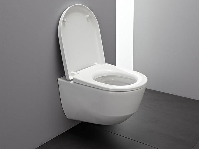 Pack WC suspendida carené Rimless Laufen Pro 861957: Amazon.es: Bricolaje y herramientas