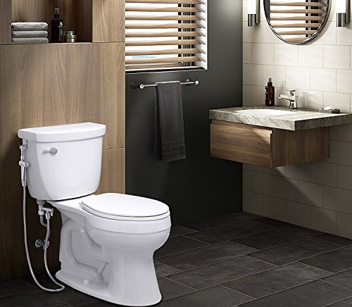 Rinseworks Aquaus 360 Patented Hand Held Bidet With Abs