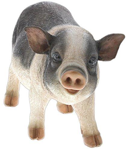 re's Gallery Pet Pals (Pot-Bellied Pig) ()