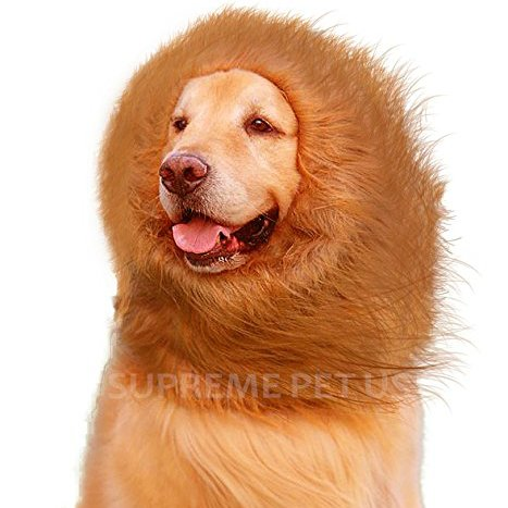 Lion Mane Dog Costume by Supreme Pet US | Halloween Party, Animal Cosplay, Funny Prank by Supreme Pet US | Extra Soft Faux Fur | 100% Guarantee -