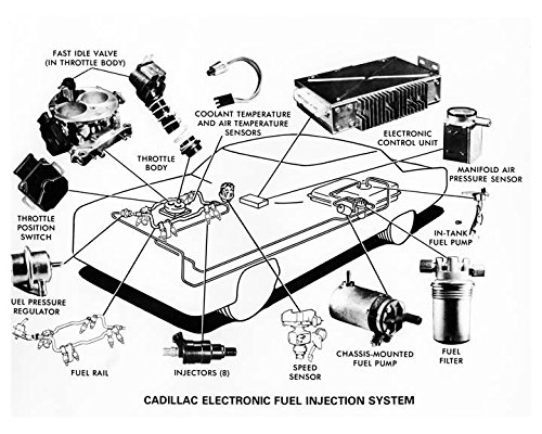 Amazon Com 1976 Cadillac Electronic Fuel Injection System Photo