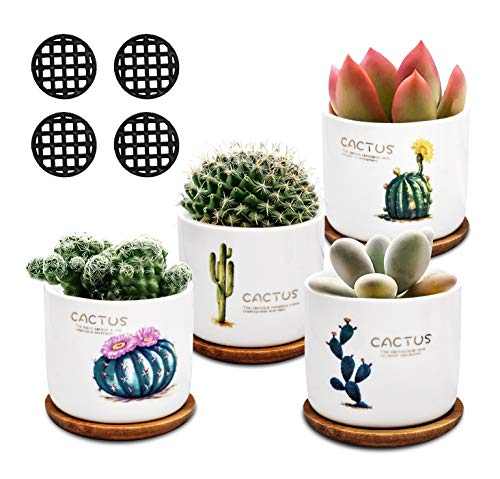 Succulent Planter Mini 3 Inch Cactus Plant Pots with Bamboo Tray Ceramic Indoor Herb Air Planter