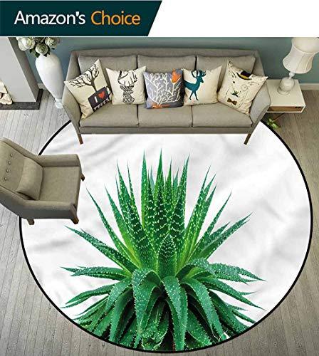 RUGSMAT Plant Area Rugs Ring 3D Non-Slip Rug,Vibrant Aloe Vera Coffee Table Mat Non-Skid Living Room Carpet Round-51