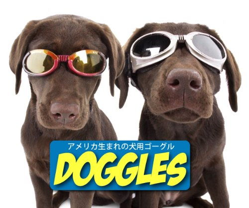 Doggles ILS Medium Racing Flames Frame and Orange Lens