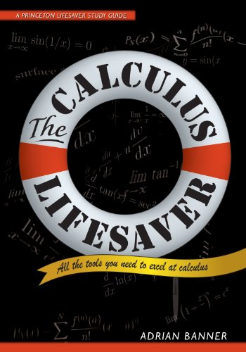 The Calculus Lifesaver: All the Tools You Need to Excel at Calculus (Princeton Lifesaver Study Guides) cover