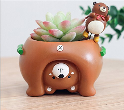 Youfui Cute Dog Flowerpot Animal Resin Succulent Planter Desk Mini Ornament (Bear Pot)