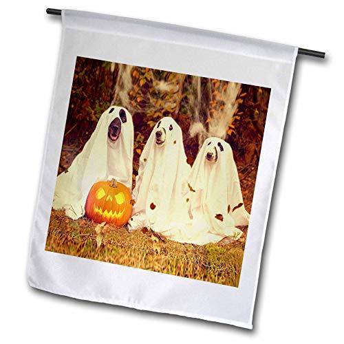 3dRose Sandy Mertens Halloween Designs - Dogs in Ghost Costumes with Jack o Lantern Image, 3drsmm - 18 x 27 inch Garden Flag (fl_290224_2)]()