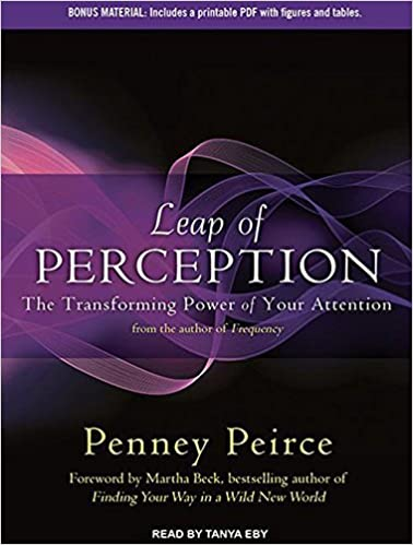 Kostenlose Downloads des Buches Leap of Perception: The Transforming Power of Your Attention auf Deutsch PDF PDB CHM by Penney Peirce