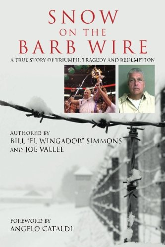 Snow On The Barb Wire