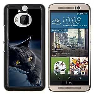 "Be-Star Único Patrón Plástico Duro Fundas Cover Cubre Hard Case Cover Para HTC One M9+ / M9 Plus (Not M9) ( Siamés Gatito lindo de la pata suave peludo Bestia"" )"