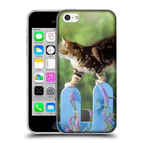 Just Phone Cases Coque de Protection TPU Silicone Case pour // V00004276 chat marche sur une clôture bleue // Apple iPhone 5C