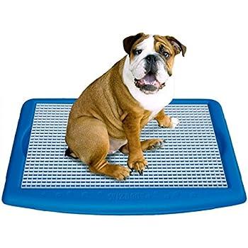 Amazon.com : UGODOG Indoor Dog Potty : Pet Floor Protection Trays ...