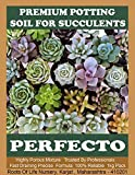 RootsOfLife Perfecto Soil for Succulents and Cactus