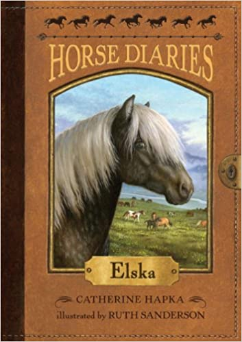 Image result for the horse diaries book 1