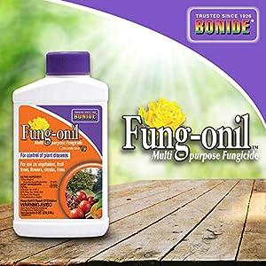 Bonide (BND879) - Fungal Disease Control, Fung-onil Multi-Purpose Fungicide Concentrate (8 oz.)