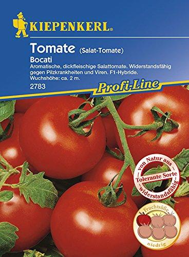 Kiepenkerl Saatgut Tomaten 10 Korn