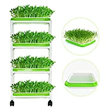 4 Layers Sprout Trays with Extra Strength Plastic Shelf Soil-Free Healthy Wheatgrass Seeds Grower & Storage Trays for Garden Home Office