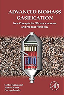 Amazon biomass gasification pyrolysis and torrefaction advanced biomass gasification new concepts for efficiency increase and product flexibility fandeluxe Images