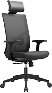 Ergonomic Multi Function Mesh Office Chair with Lumbar Support, Adjustable Armrest (Headrest, Black)