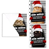 Purrpetrator Santa Cats Holiday Card Assortment Pack - Set of 24 cards - 8 of each design, versed inside with envelopes