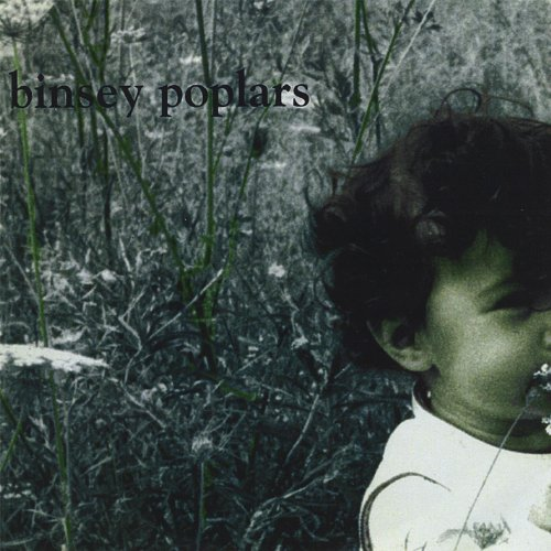 binsey poplars 현재 위치: 홈 / 분류되지 않음 / binsey poplars poem analysis essay (doing a literature review hart 1999) binsey poplars poem analysis essay.