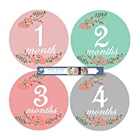 Baby Monthly Stickers for Baby Girl in Floral
