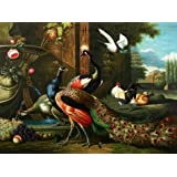 The high quality polyster Canvas of oil painting 'Peacock, Poultry and Fruits' ,size: 30x40 inch / 76x102 cm ,this High Resolution Art Decorative Prints on Canvas is fit for Hallway artwork and Home decor and Gifts