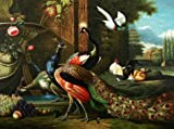 The Perfect effect Canvas of oil painting 'Peacock, Poultry and Fruits' ,size: 10x13