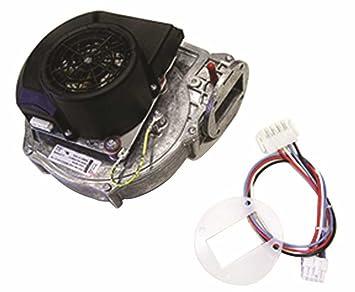 HTP, INC. MUNCHKIN BLOWER MOTOR, 140M 7250P-086 - - Amazon.com