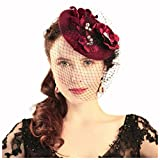 Drasawee Women's Vintage Wedding Bridal Birdcage Face Veil Evening Hair Clip