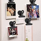 20pack Fridge Magnets Refrigerator Magnets Magnetic