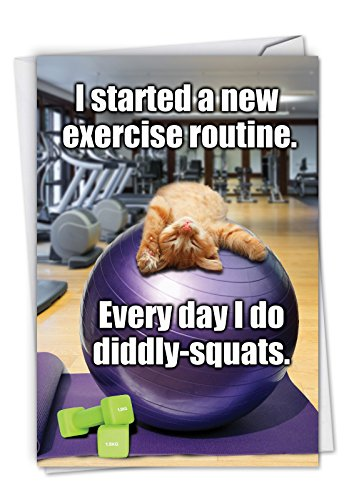 Diddly Squats: Funny Birthday Card Featuring Kitty#039s Newest Workout Routine with Envelope C3955BDG
