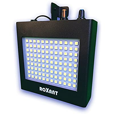 roxant-pulse-ultra-bright-led-strobe
