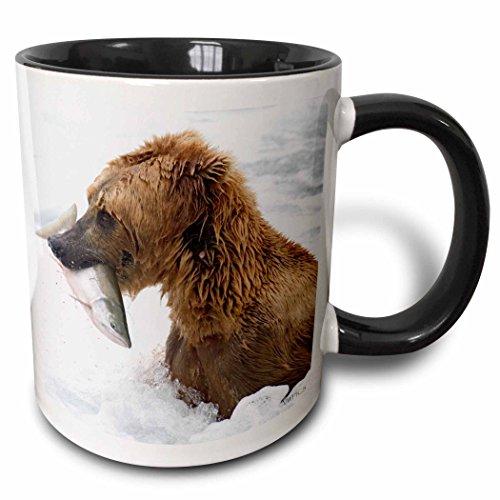 3dRose 3dRose Brown (Grizzly) Bear with Salmon in white water - closeup.Katmai National Park, Alaska - Two Tone Black Mug, 11oz (mug_45693_4), , - Bear Grizzly Pic