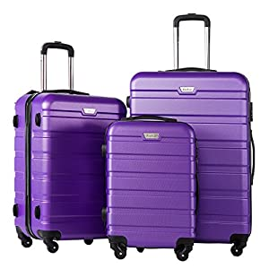 COOLIFE Luggage 3 Piece Set Suitcase Spinner Hardshell Lightweight TSA Lock 4 Piece Set