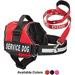 Service Dog Vest With Hook and Loop Straps & Matching Service Dog Leash Set - Harnesses From XXS to XXL - Service Dog Harness Features Reflective Patch and Comfortable Mesh Design (Red, XS)