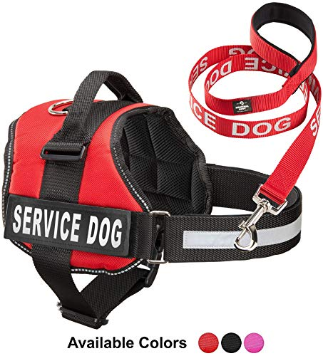 Service Dog Vest With Hook and Loop Straps & Matching Service Dog Leash Set - Harnesses From XXS to XXL - Service Dog Harness Features Reflective Patch and Comfortable Mesh Design (Red, Large)