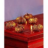 Pumpkin String LED Lighted Fall Grapevine Collection Fall Autumn Rattan & Metal (Pumpkin String Lights)