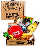 Prime Pet Box Dog Gift Box Care Package - Made in the USA Premium Treats, Plush Duck, Rope & Flying Disc