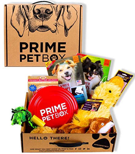 Prime Pet Box Dog Gift Box Care Package - Made in the USA Premium Treats, Plush Duck, Rope & Flying (Gifts For Pets)