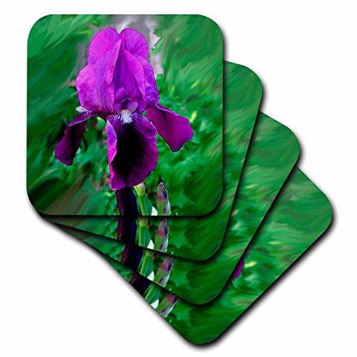 3dRose cst_1235_3 Purple Iris Ceramic Tile Coasters, Set of 4