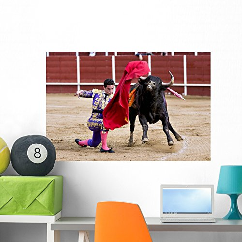 Holiday Costumes In Spain (Matador Bullring Bull Fighting Wall Mural by Wallmonkeys Peel and Stick Graphic (36 in W x 24 in H) WM365573)